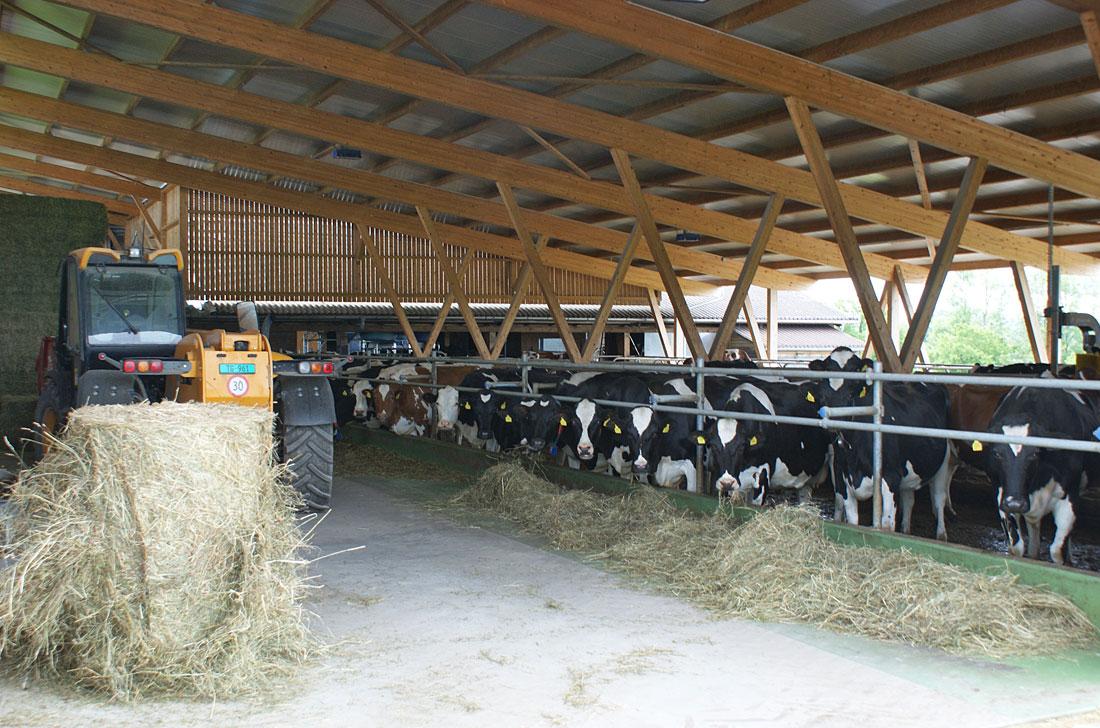 Landwirtschaftlicher Bau