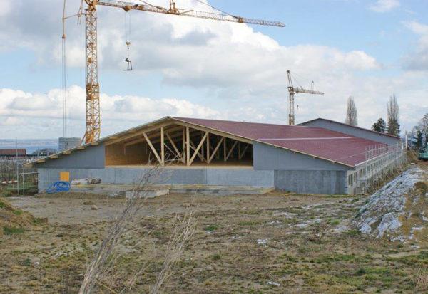 Neubau Schweinestall Dozwil